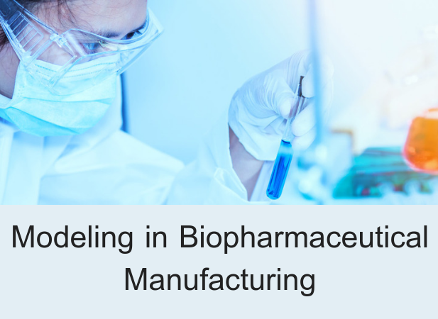 Modeling in Biopharmaceutical Manufacturing